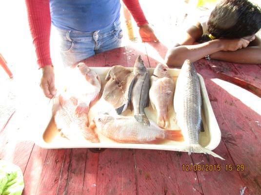 Viaje Barranquilla Dic 15 200