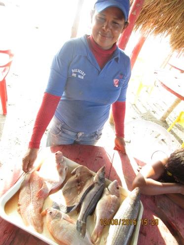Viaje Barranquilla Dic 15 201