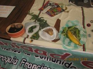 Como campesinos/as presentes, presentamos nuestras ofrendas y frutos de la Madre Tierra.